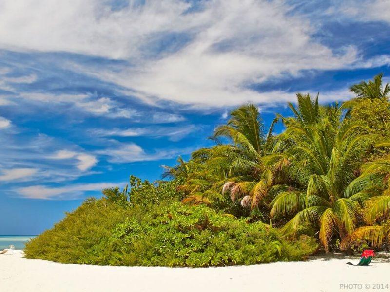 Asdu Sun Island Resort Maldives Header