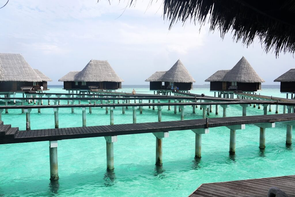 Coco Palm Dhuni Kolhu Resort Maldives Header