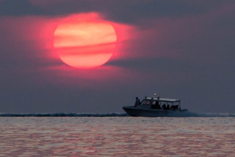 Sunset Dolphin Cruise with Full Day Maldives Adventure Trip