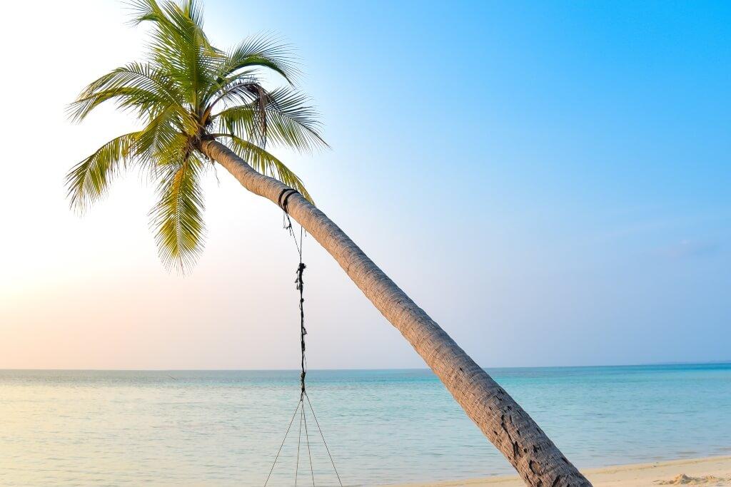 Maldives 7 Nights / 8 Days Tour Package Header