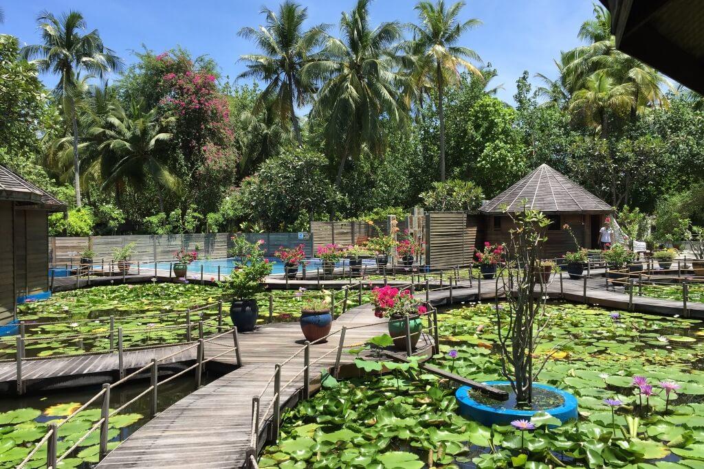 Nika Island Resort Maldives Header