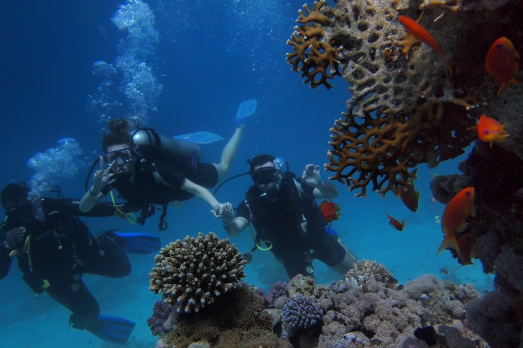 Scuba Diving in Maldives Header